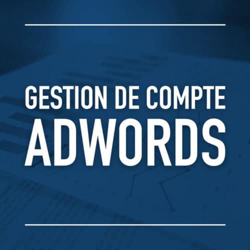 Gestion de compte AdWords